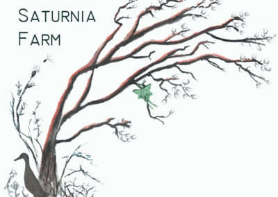 Saturnia Farm (LLC)