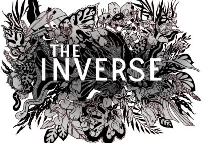 The Inverse
